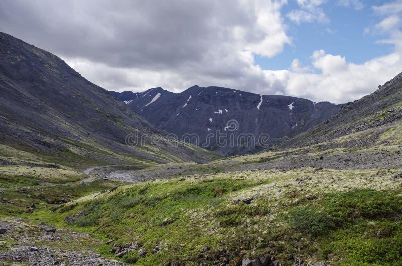 Тундра горы при мхи и утесы покрытые с лишайниками, Hibi стоковые изображения rf