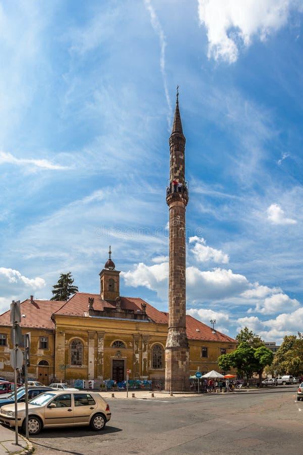 Турецкий минарет стоковые фото