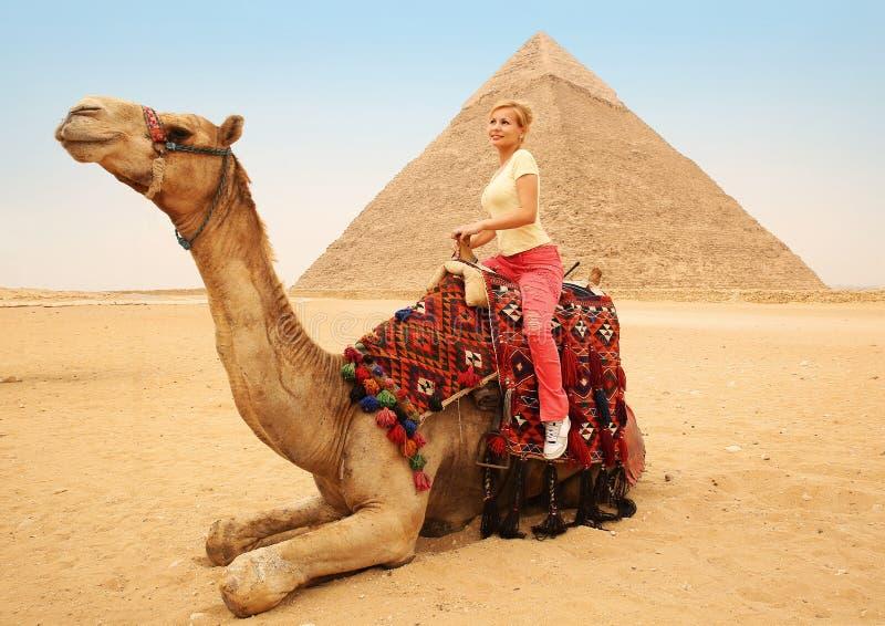 Картинки, смешные картинки толстая женщина на верблюде