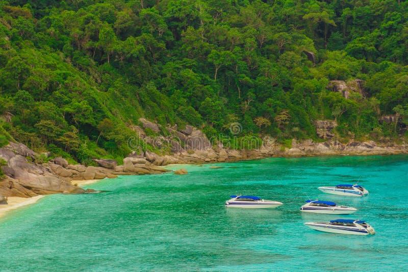 Туристские быстроходные катера на в Паттайя, Таиланде стоковое изображение rf
