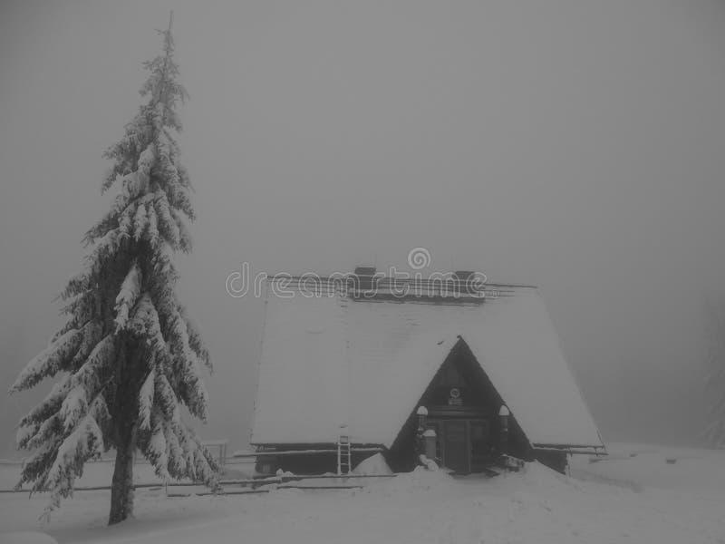 Туристское укрытие в горах Beskidy стоковые изображения rf