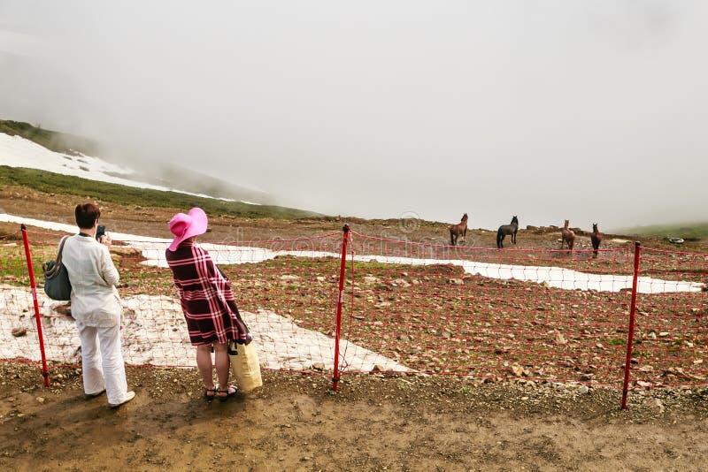 Туристы в горах лыжа курорта Сочи стоковое фото rf