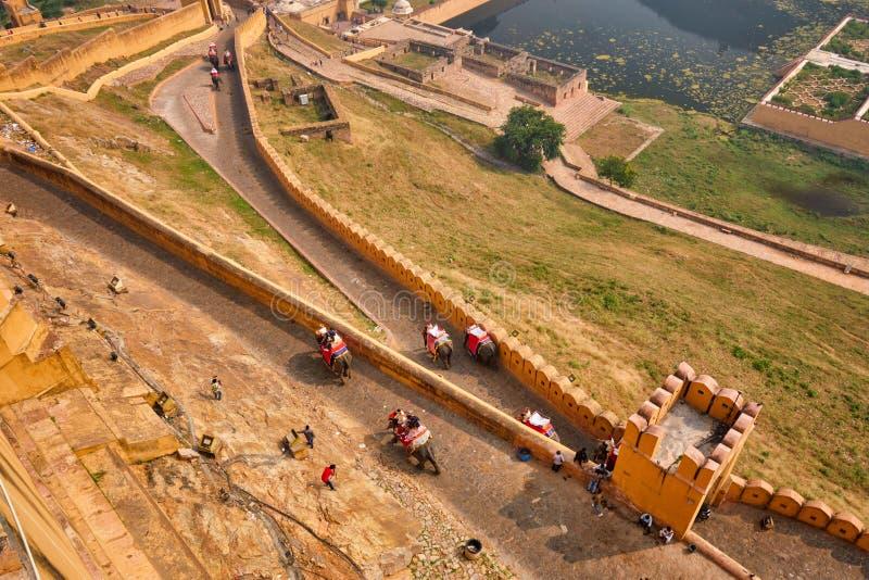 Туристы ездят на слонах по направлению к форту Амер стоковые фотографии rf