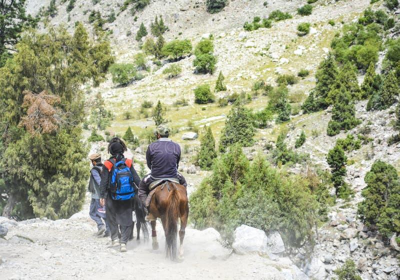 Туристы ехать на лошадях назад от злаковика лугов феи стоковая фотография