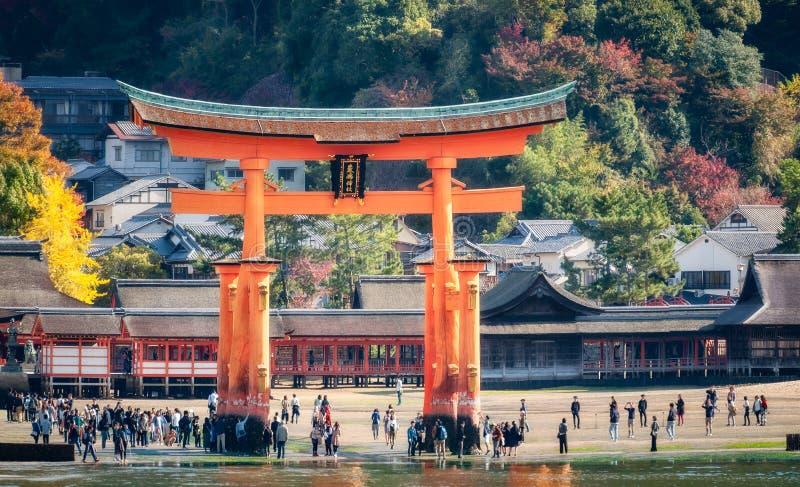 Туристы идут вокруг известных ворот Torii на острове Miyajima, Японии стоковое фото rf