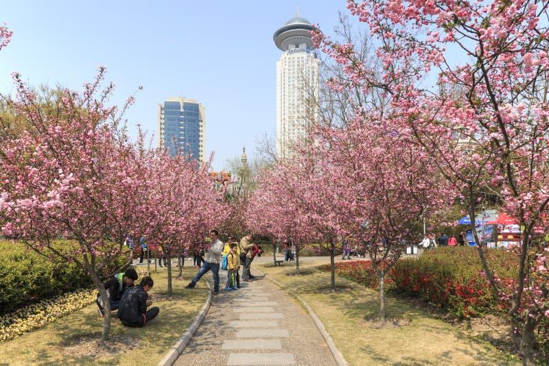 Туристы идя в парк людей одно самого занятого в Шанхае стоковые фотографии rf