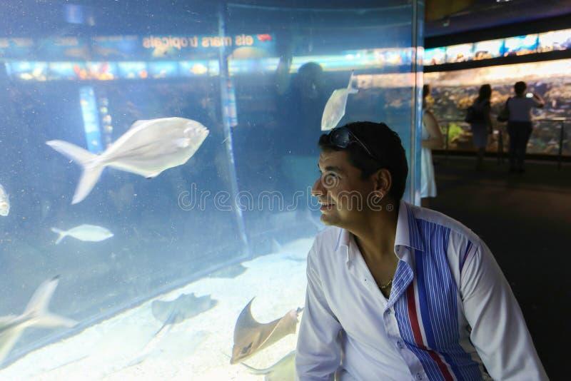 Туристы на аквариуме - Барселоне, Испании стоковые фото