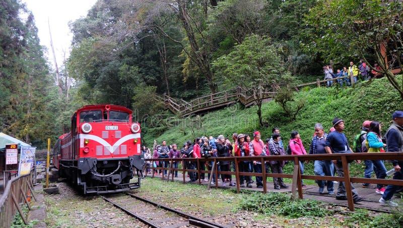 Туристы на железной дороге леса Alishan стоковые изображения