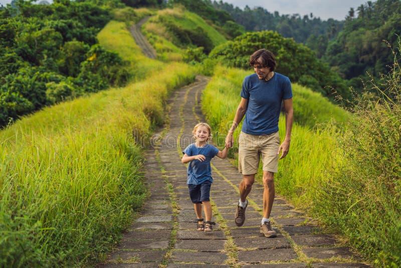 Туристы папы и сына в Campuhan Ридже идут, сценарная зеленая долина в Ubud Бали Путешествовать с концепцией детей стоковое фото rf