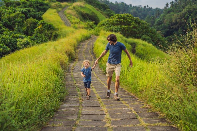Туристы папы и сына в Campuhan Ридже идут, сценарная зеленая долина в Ubud Бали Путешествовать с концепцией детей стоковое изображение rf