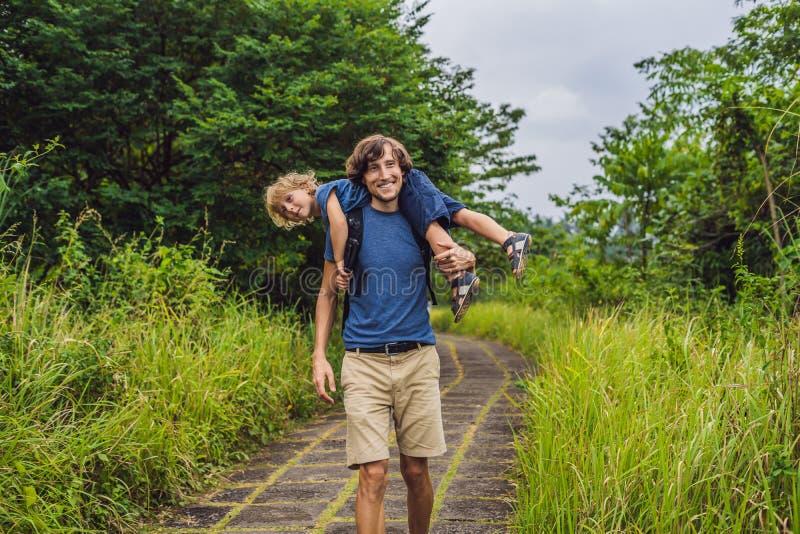 Туристы папы и сына в Campuhan Ридже идут, сценарная зеленая долина в Ubud Бали Путешествовать с концепцией детей стоковые фото