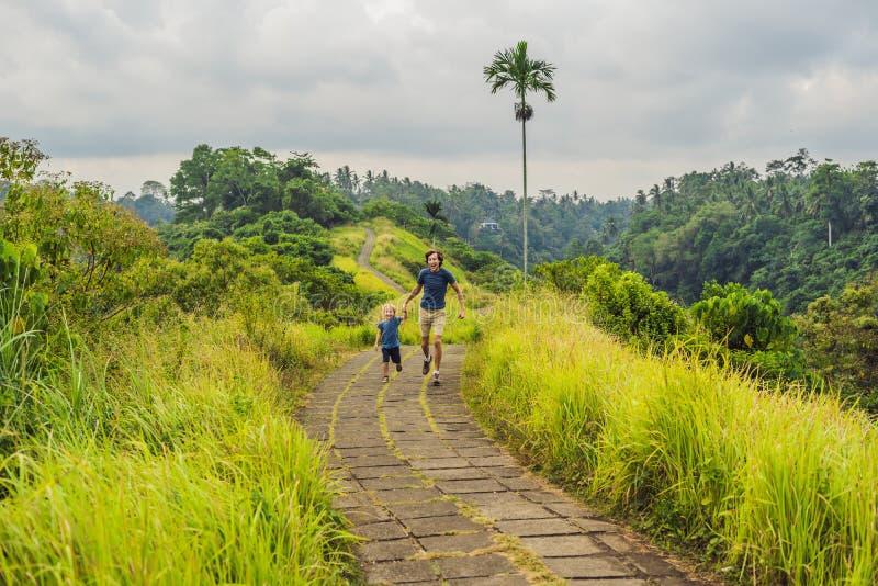 Туристы папы и сына в Campuhan Ридже идут, сценарный зеленый Valle стоковое фото rf