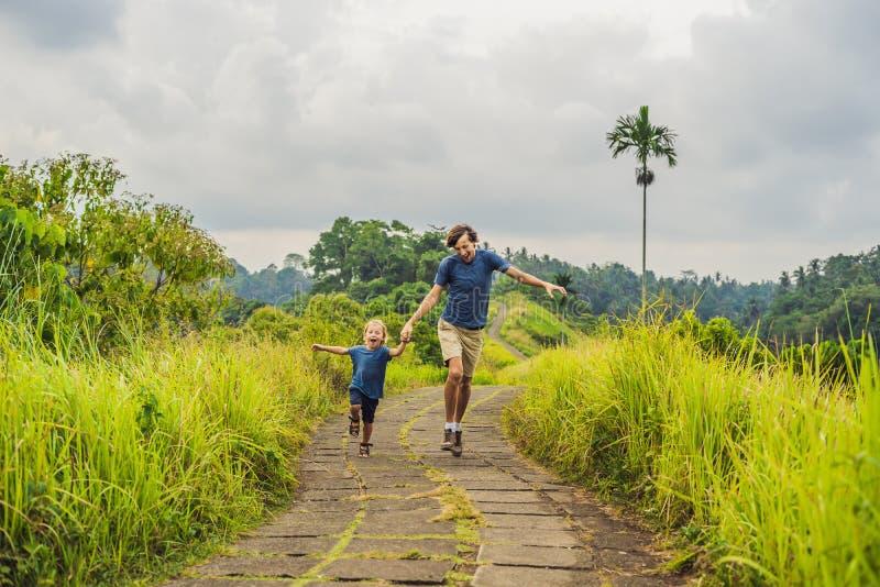 Туристы папы и сына в Campuhan Ридже идут, сценарный зеленый Valle стоковое изображение rf