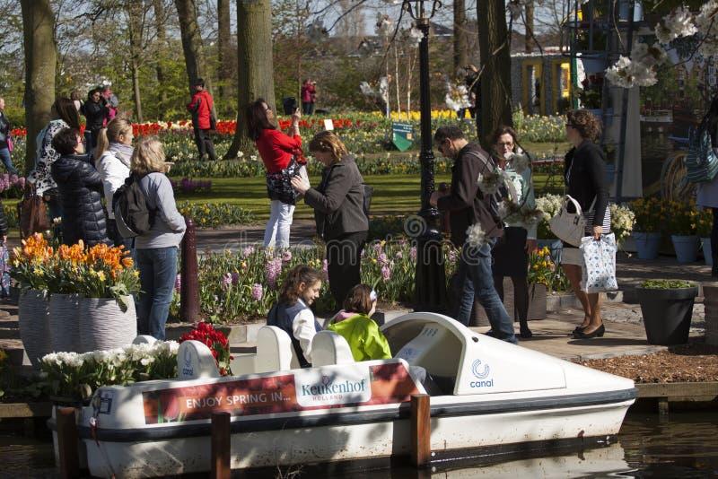Туристы посещают Keukenhof стоковые изображения