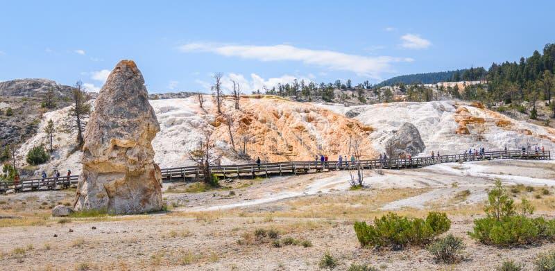 Туристы посещая террасу крышки и палитры свободы в области Mammoth Hot Springs Парк Йеллоустона стоковое изображение