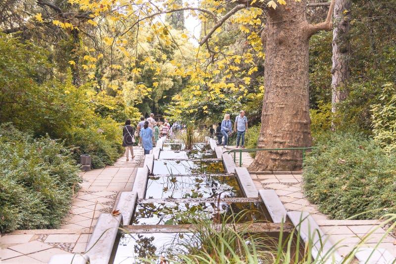 Туристы, путешественники, посетители идут на красивую лестницу с фонтаном каскада в ботаническом саде стоковая фотография rf