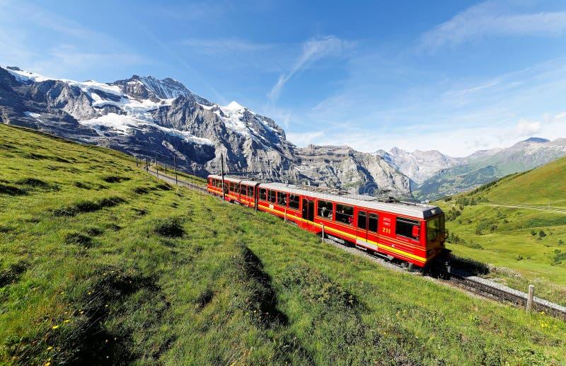 Туристы путешествуя на поезде cogwheel известной железной дороги Jungfrau от верхней части Jungfraujoch Европы стоковое изображение rf
