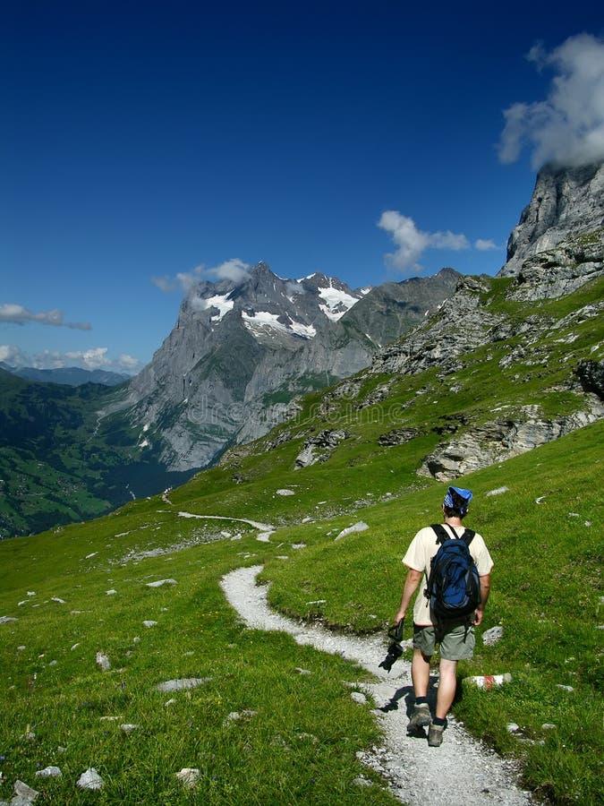 Турист в альп стоковая фотография
