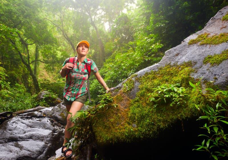 Турист молодой женщины с рюкзаком идя вдоль следа в t стоковое изображение