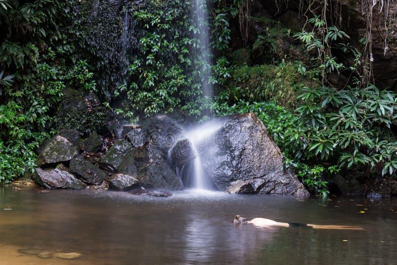 Турист наслаждается падением воды стоковые фото