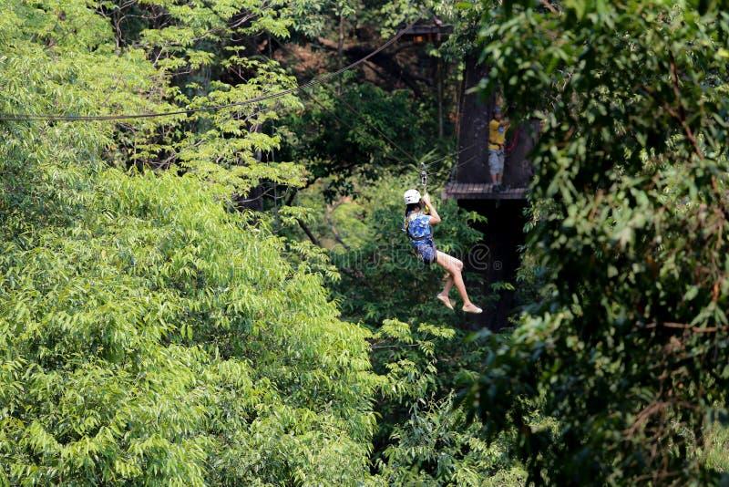 Турист приключения бросая в лес стоковая фотография rf