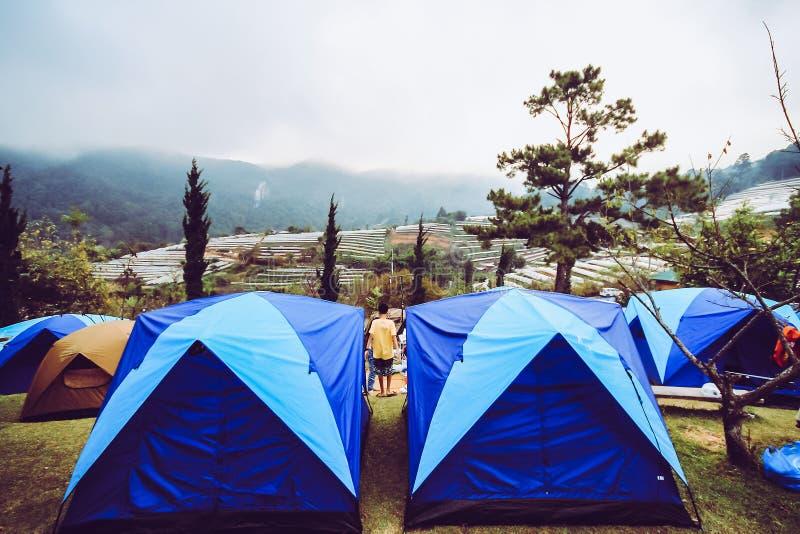 Турист располагаясь лагерем в горе Doi SureYa, Doi Inthanon, ChiangMai, Таиланда - туманного в вечере стоковое фото rf