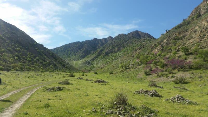 Туркменские горы весной стоковое фото rf