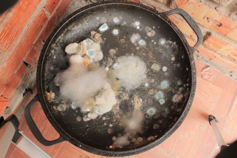 Тухлый и moldy крупный план еды стоковое фото rf