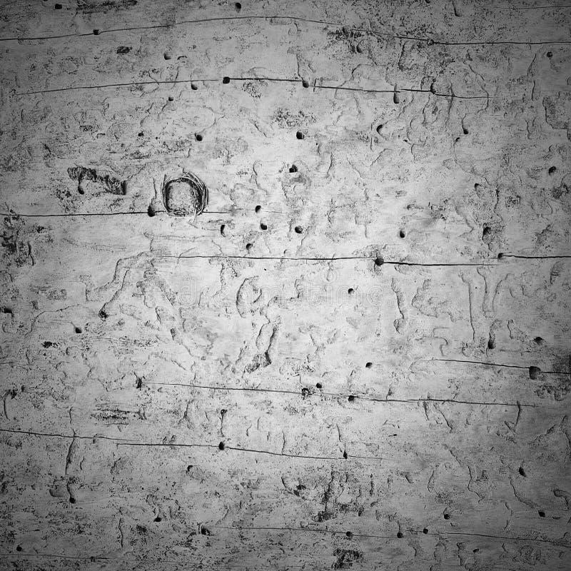 Тухлая деревянная текстура стоковые изображения rf