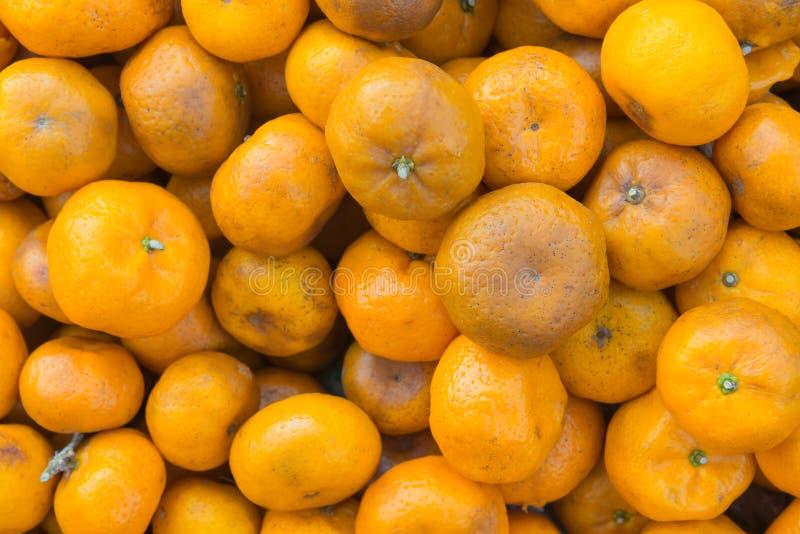 Тухлые апельсины при зоны прессформы показывая почти везде стоковое изображение rf