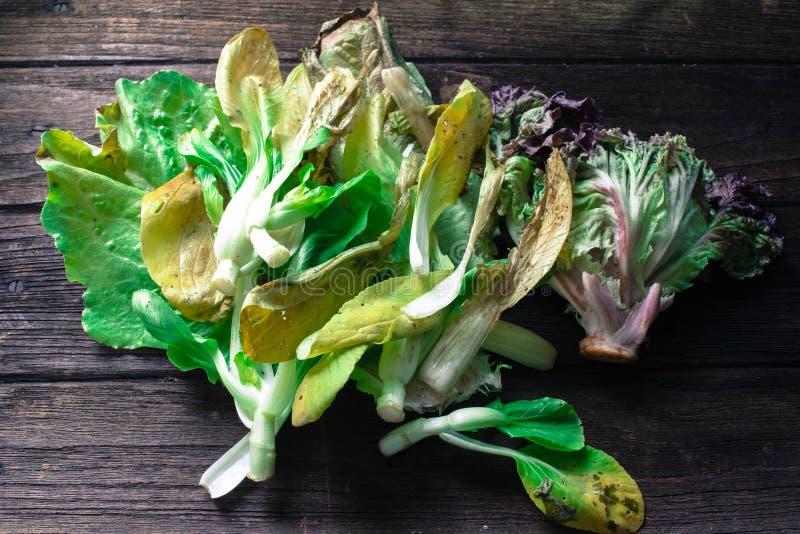 Тухлые китайская капуста и салат на деревянном backg стоковое фото