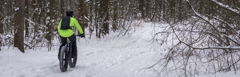 Тучный велосипед велосипеда также вызванный тучный или велосипед тучн-автошины - задействовать на большом катит внутри лес зимы стоковое изображение rf