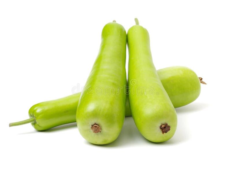 Тыква бутылки длинного зеленого цвета штабелировала вверх по совместно показанный от одной стороны Свежие фрукты имеют салатовую  стоковые фото