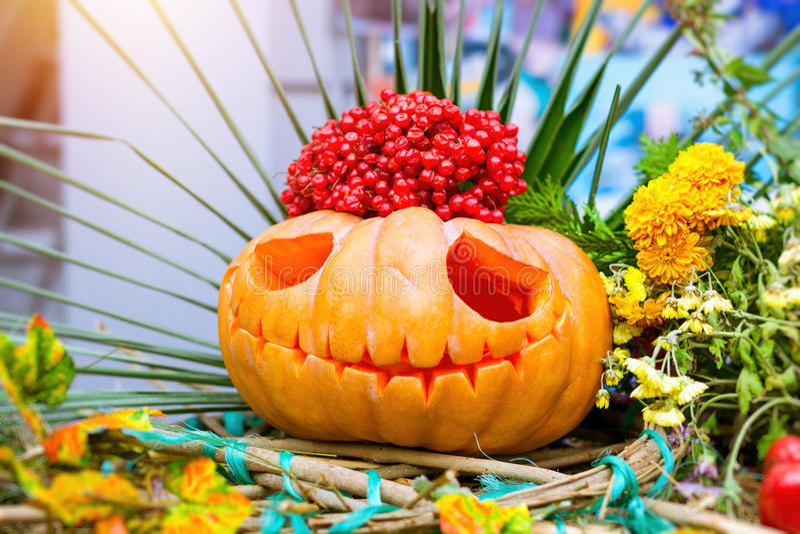 Тыква и цукини на хеллоуин стоковые изображения rf