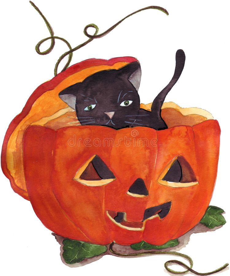 тыква померанца черного кота иллюстрация штока