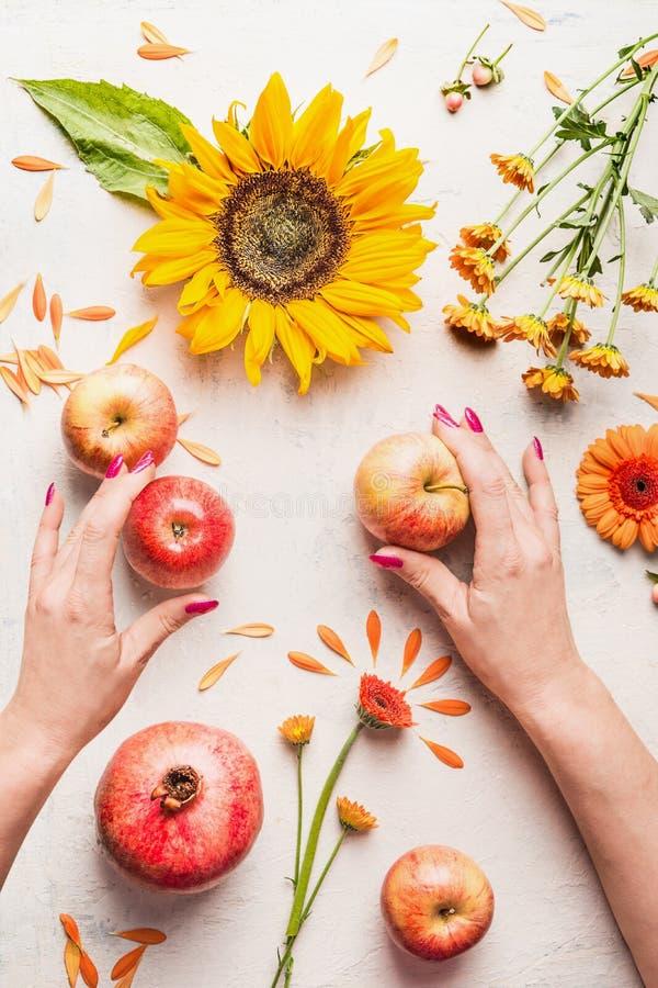 Тыква с яблоками, цветками, гранатовым деревом и солнцецветами на белой таблице, взгляде сверху Составлять плана осени или поздни стоковое фото