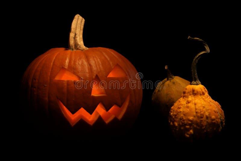 Тыква хеллоуина сияющая от стоковые фотографии rf