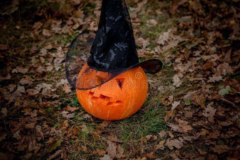 Тыква хеллоуина страшная с улыбкой в лесе осени стоковое фото rf