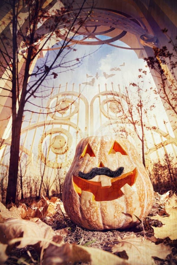 Download Тыква хеллоуина около строба Иллюстрация штока - изображение: 33769994