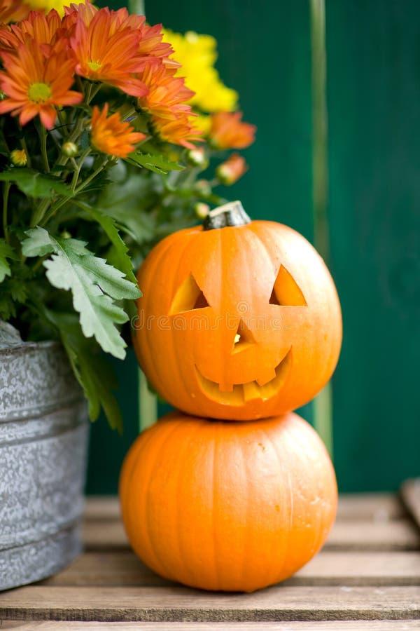 Тыква Halloween стоковая фотография rf