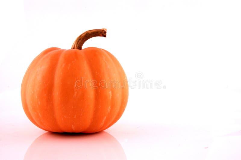 Тыква Halloween стоковые изображения