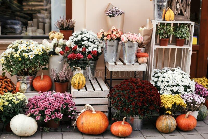 Тыквы, сквош и цветки на деревенских деревянных коробках в улице города, фронты магазина украшений праздника и здания halloween стоковое фото rf