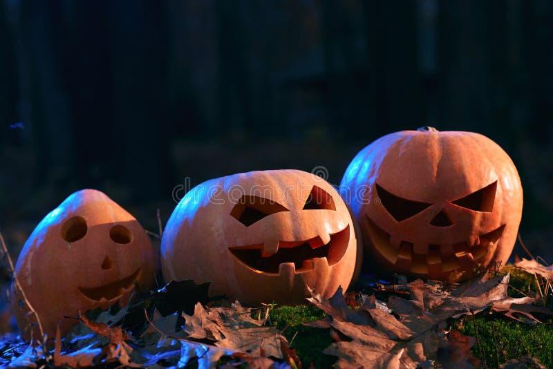 3 тыквы, смешной, удивленный и сердитый подготавливают на хеллоуин стоковые изображения