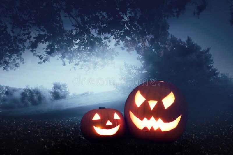 Тыквы хеллоуина на предпосылке леса осени стоковая фотография