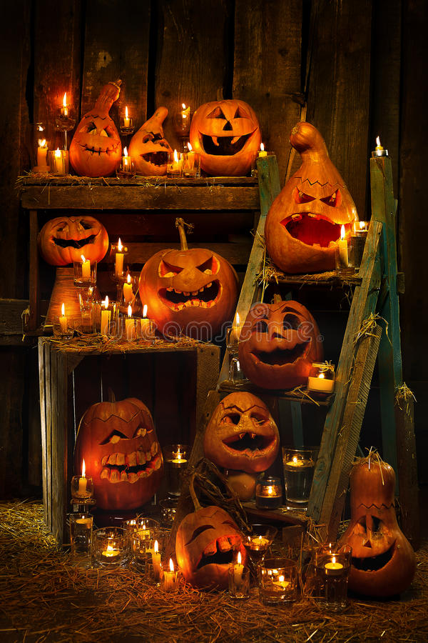 Тыквы хеллоуина Стоковые Фотографии RF