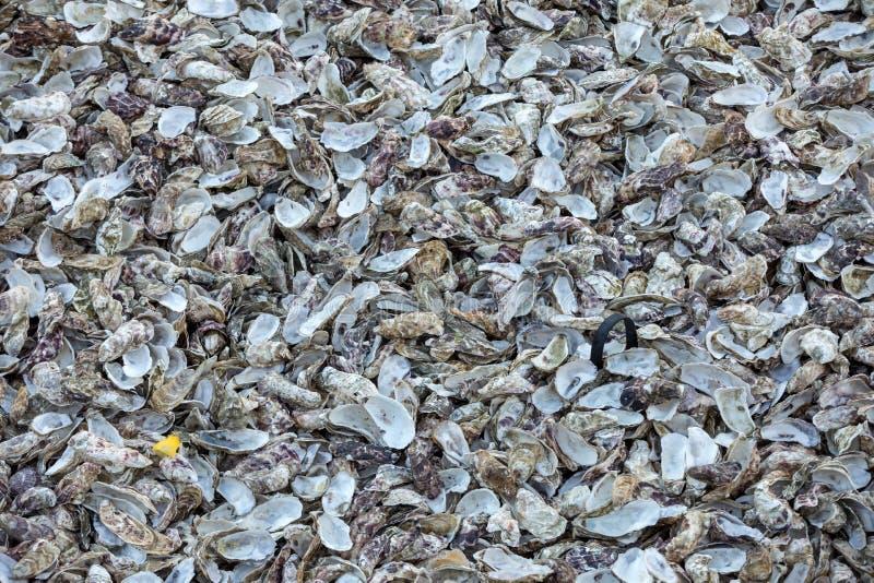 Тысячи пустых раковин съеденных устриц сброшенных на морском дн дне в Cancale, известном для ферм устрицы brittani стоковая фотография