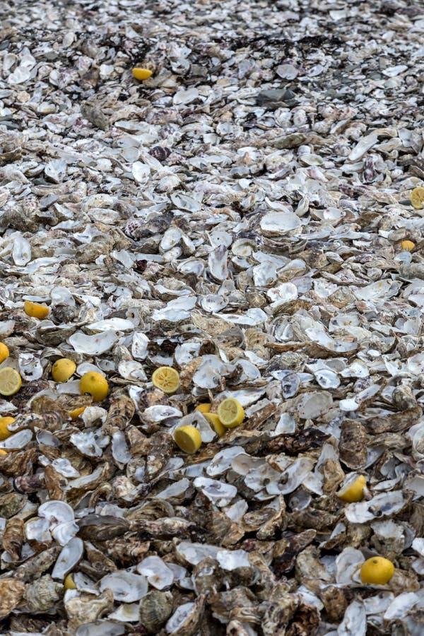 Тысячи пустых раковин съеденных устриц сброшенных на морском дн дне в Cancale, известном для ферм устрицы brittani стоковые изображения