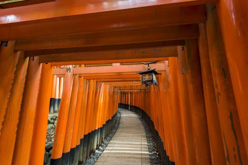 Тысячи стробов torii, святыни Fushimi Inari, Киото, Японии стоковая фотография rf