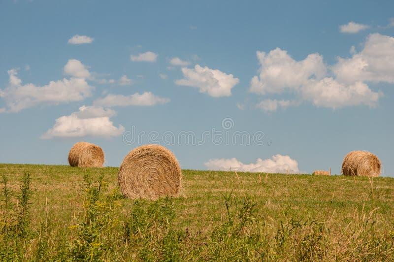 тюкует небеса голубого сена ny upstate стоковые изображения