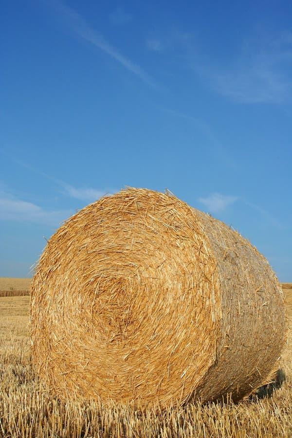 тюкуйте сено стоковое изображение